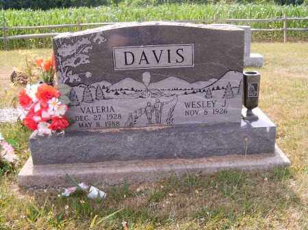 DAVIS, VALERIA - Brown County, Ohio | VALERIA DAVIS - Ohio Gravestone Photos