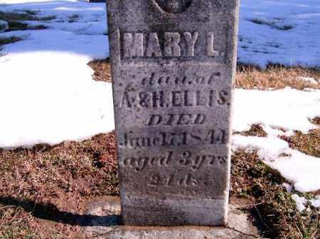 ELLIS, MARY  L - Brown County, Ohio | MARY  L ELLIS - Ohio Gravestone Photos