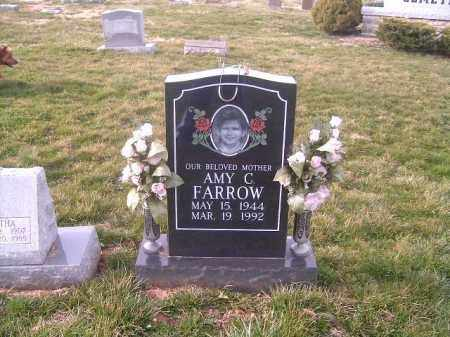 FARROW, AMY  C - Brown County, Ohio | AMY  C FARROW - Ohio Gravestone Photos