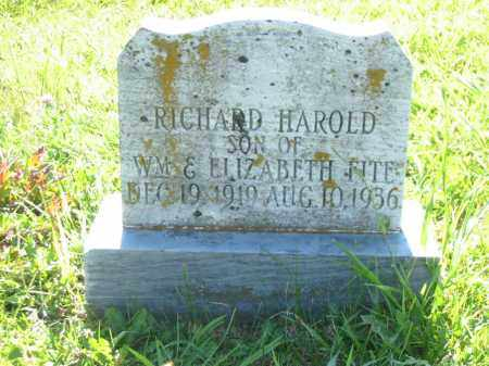 FITE, RICHARD HAROLD - Brown County, Ohio | RICHARD HAROLD FITE - Ohio Gravestone Photos