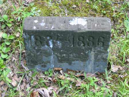 FITE, T HAMER - Brown County, Ohio | T HAMER FITE - Ohio Gravestone Photos