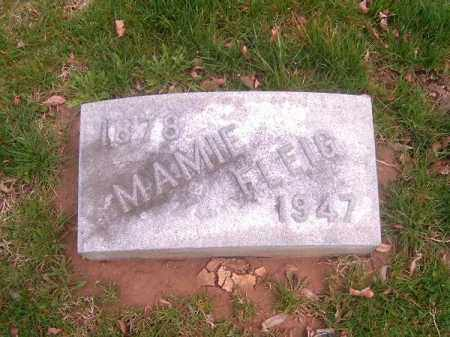 FLEIG, MAMMIE - Brown County, Ohio | MAMMIE FLEIG - Ohio Gravestone Photos