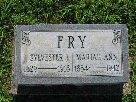 FRY, MARIA ANN - Brown County, Ohio | MARIA ANN FRY - Ohio Gravestone Photos