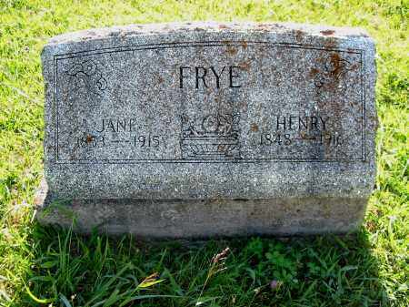 TIVIS FRY, SARAH JANE - Brown County, Ohio | SARAH JANE TIVIS FRY - Ohio Gravestone Photos