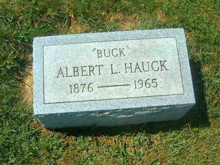 HAUCK, ALBERT - Brown County, Ohio | ALBERT HAUCK - Ohio Gravestone Photos