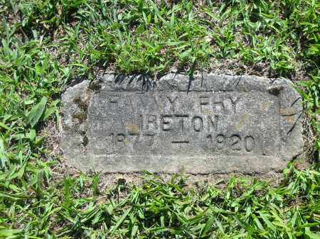 FRY IRETON, FANNY - Brown County, Ohio | FANNY FRY IRETON - Ohio Gravestone Photos