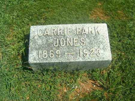 PARK JONES, CARRIE - Brown County, Ohio | CARRIE PARK JONES - Ohio Gravestone Photos