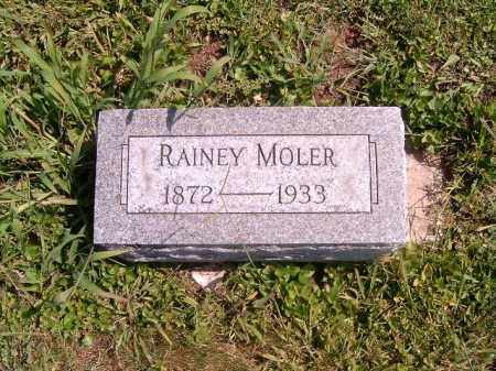 MOLER, RAINEY - Brown County, Ohio | RAINEY MOLER - Ohio Gravestone Photos