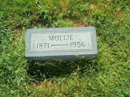 OWEN, MOLLIE - Brown County, Ohio | MOLLIE OWEN - Ohio Gravestone Photos