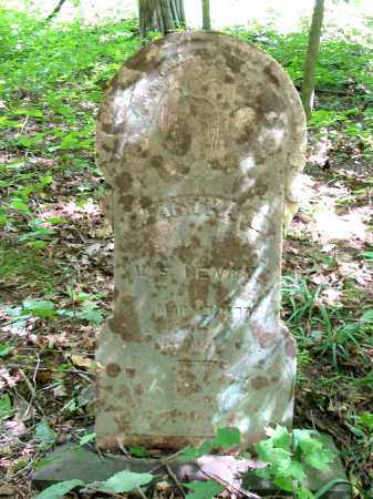 FISCUS PENNY, MARTHA ANN - Brown County, Ohio | MARTHA ANN FISCUS PENNY - Ohio Gravestone Photos
