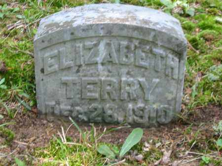 TERRY, ELIZABETH - Brown County, Ohio | ELIZABETH TERRY - Ohio Gravestone Photos