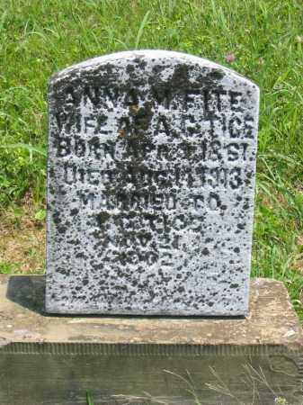 FITE TICE, ANNA M - Brown County, Ohio | ANNA M FITE TICE - Ohio Gravestone Photos