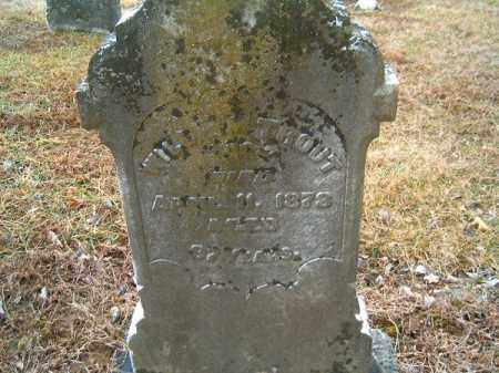 TROUT, WILLIAM - Brown County, Ohio   WILLIAM TROUT - Ohio Gravestone Photos