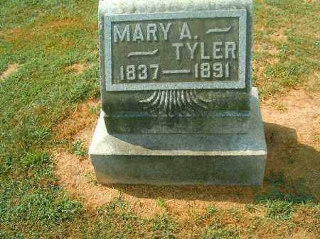 TYLER, MARY  A - Brown County, Ohio | MARY  A TYLER - Ohio Gravestone Photos