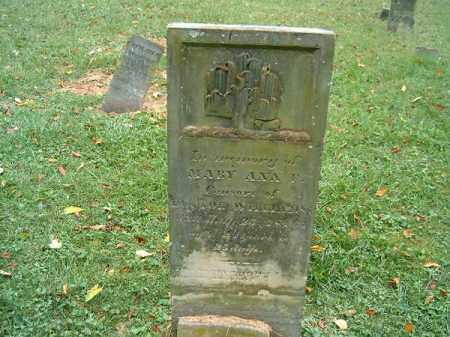 WILLIAMS, MARY ANN - Brown County, Ohio   MARY ANN WILLIAMS - Ohio Gravestone Photos