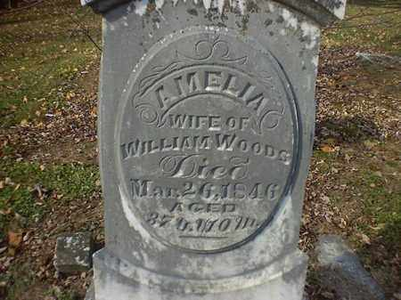 WOODS, AMELIA - Brown County, Ohio   AMELIA WOODS - Ohio Gravestone Photos