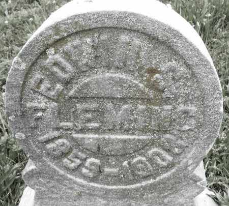 FLEMING, EDWIN S. - Butler County, Ohio | EDWIN S. FLEMING - Ohio Gravestone Photos