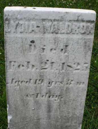 WALDRON, LYDIA - Butler County, Ohio   LYDIA WALDRON - Ohio Gravestone Photos