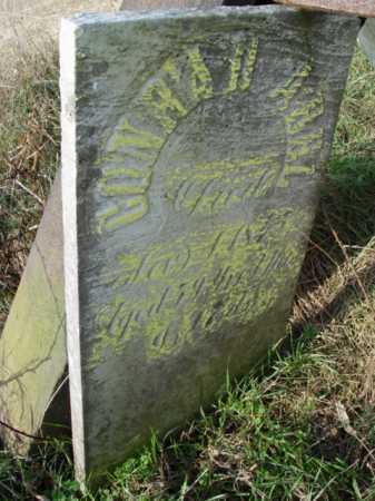 ABEL, CONRAD [VIEW 3] - Carroll County, Ohio | CONRAD [VIEW 3] ABEL - Ohio Gravestone Photos