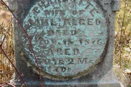 ALGEO, CHARLOTTE - Carroll County, Ohio | CHARLOTTE ALGEO - Ohio Gravestone Photos