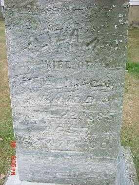 ALLMON, ELIZA A. - Carroll County, Ohio | ELIZA A. ALLMON - Ohio Gravestone Photos