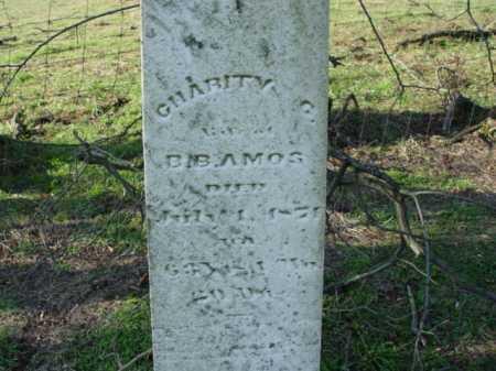 AMOS, CHARITY - Carroll County, Ohio | CHARITY AMOS - Ohio Gravestone Photos