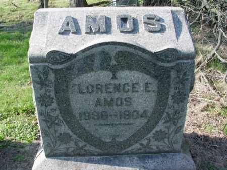 AMOS, FLORENCE E. - Carroll County, Ohio | FLORENCE E. AMOS - Ohio Gravestone Photos