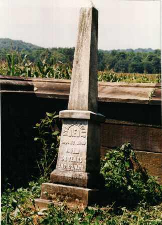 VAUGHN BEVER, LYDIA - Carroll County, Ohio | LYDIA VAUGHN BEVER - Ohio Gravestone Photos
