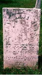 LIVINGSTON BLACK, MARY JANE - Carroll County, Ohio | MARY JANE LIVINGSTON BLACK - Ohio Gravestone Photos