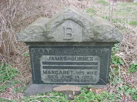 BURNES, JAMES - Carroll County, Ohio | JAMES BURNES - Ohio Gravestone Photos