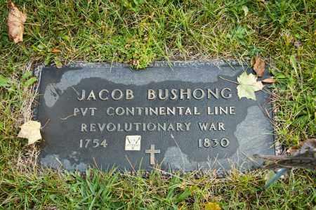 BUSHONG, JACOB - Carroll County, Ohio | JACOB BUSHONG - Ohio Gravestone Photos