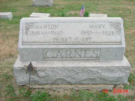 CARNES, MARY - Carroll County, Ohio | MARY CARNES - Ohio Gravestone Photos