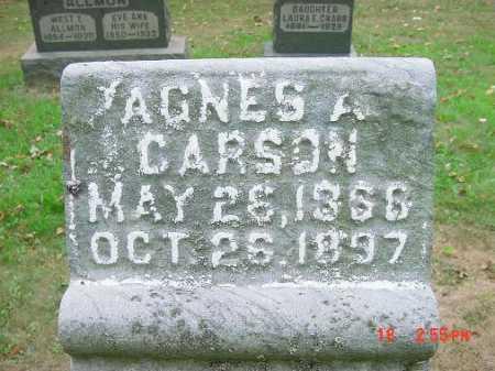 CARSON, AGNES A. - Carroll County, Ohio | AGNES A. CARSON - Ohio Gravestone Photos
