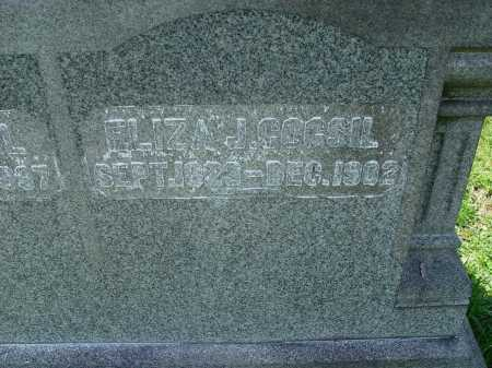 COGSIL, ELIZA J. - Carroll County, Ohio | ELIZA J. COGSIL - Ohio Gravestone Photos