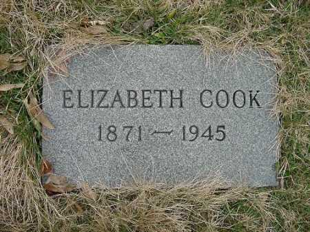 COOK, ELIZABETH - Carroll County, Ohio | ELIZABETH COOK - Ohio Gravestone Photos
