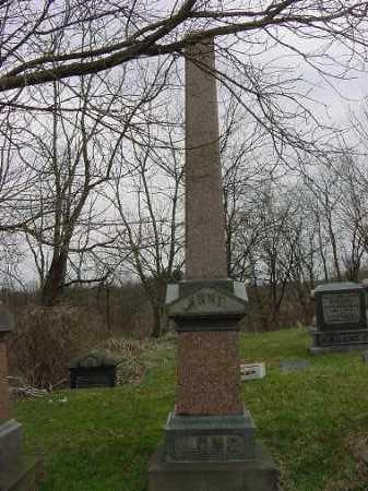 CUMMINGHAM, ANNIE - Carroll County, Ohio   ANNIE CUMMINGHAM - Ohio Gravestone Photos