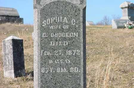 DUDGEON, SOPHIA - Carroll County, Ohio | SOPHIA DUDGEON - Ohio Gravestone Photos