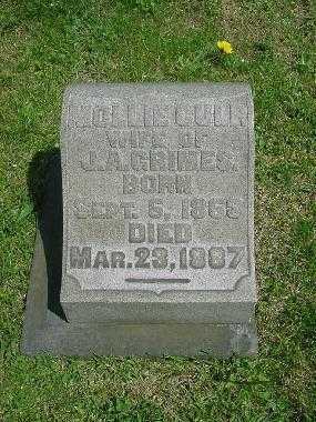CULP GRIMES, MOLLIE - Carroll County, Ohio | MOLLIE CULP GRIMES - Ohio Gravestone Photos