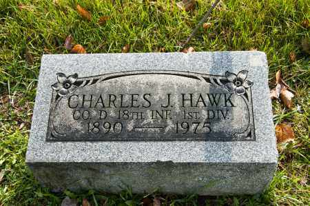 HAWK, CHARLES JASON - Carroll County, Ohio | CHARLES JASON HAWK - Ohio Gravestone Photos