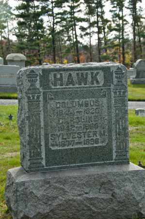 BUSLER HAWK, CAROLINE J. - Carroll County, Ohio | CAROLINE J. BUSLER HAWK - Ohio Gravestone Photos