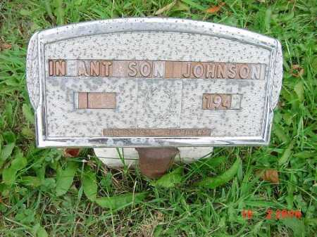 JOHNSON, INFANT SON - Carroll County, Ohio | INFANT SON JOHNSON - Ohio Gravestone Photos