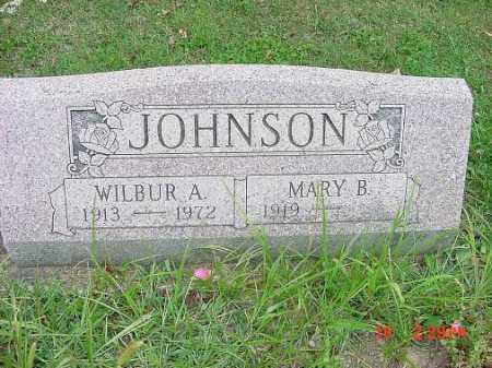 JOHNSON, WILBUR A. - Carroll County, Ohio | WILBUR A. JOHNSON - Ohio Gravestone Photos