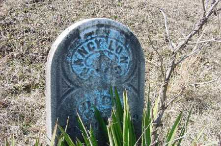 LONG, NANCY - Carroll County, Ohio | NANCY LONG - Ohio Gravestone Photos