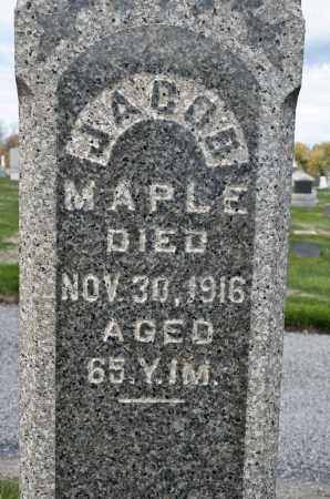 MAPLE, JACOB - Carroll County, Ohio | JACOB MAPLE - Ohio Gravestone Photos