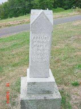 MAPLE, MONUMENT - Carroll County, Ohio | MONUMENT MAPLE - Ohio Gravestone Photos