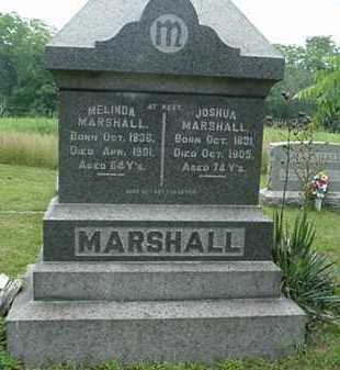 ROUDEBUSH MARSHALL, MELINDA - Carroll County, Ohio | MELINDA ROUDEBUSH MARSHALL - Ohio Gravestone Photos