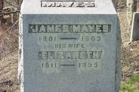 MAYES, ELIZABETH - Carroll County, Ohio | ELIZABETH MAYES - Ohio Gravestone Photos