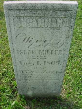 MILLER, SUSANNAH - Carroll County, Ohio | SUSANNAH MILLER - Ohio Gravestone Photos