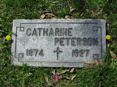 ZEBROSKE PETERSON, CATHARINE - Carroll County, Ohio | CATHARINE ZEBROSKE PETERSON - Ohio Gravestone Photos
