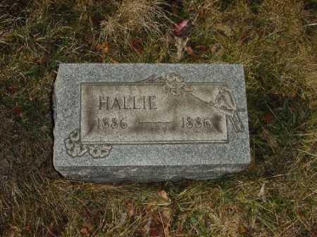 SCARLOTT, HALLIE - Carroll County, Ohio   HALLIE SCARLOTT - Ohio Gravestone Photos